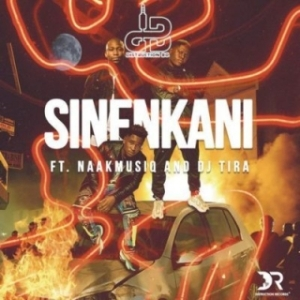 Distruction Boyz - Sinenkani ft. DJ Tira & NaakMusiQ